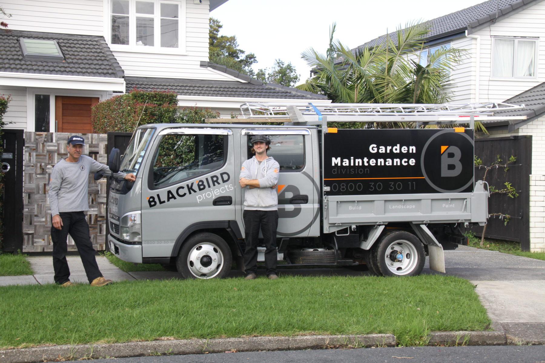 Garden Maintenance Auckland, Garden Maintenance, BlackBird Projects